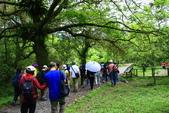 2014.04.27福山植物園&白米木屐:_MG_1348.JPG