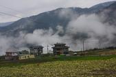 2012武陵冬景~楓葉紅銀杏黃:1305735478.jpg