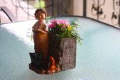 尖石紅薔薇景觀花園餐廳:1278325567.jpg