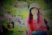 2013紫藤咖啡園:1744197454.jpg