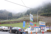 2012武陵冬景~楓葉紅銀杏黃:1305735479.jpg