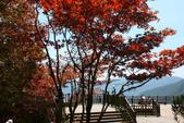太平山&翠峰湖:1753594499.jpg