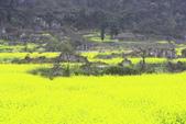 多彩貴州8日遊--雲峰屯堡古鎮&金海雪山:1045681808.jpg