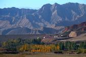 北疆金秋(4)魔鬼城、獨山子、烏魯木齊:IMG_5742.JPG