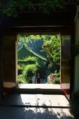 (3)杭州~萬松書院、西湖、南宋官窯、西溪溼地:S 772.JPG