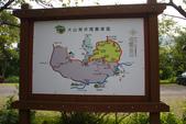 2012共桐賞花:大山背客家人文生態館:1273974708.jpg