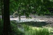 2014.04.27福山植物園&白米木屐:_MG_1391.JPG