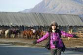 北疆金秋(3)喀納斯湖、禾木村:IMG_4723之1.JPG