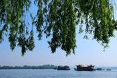 (3)杭州~萬松書院、西湖、南宋官窯、西溪溼地:S 813.JPG