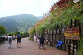 太平山&翠峰湖:1753594502.jpg