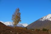 北疆金秋(3)喀納斯湖、禾木村:IMG_4186.JPG