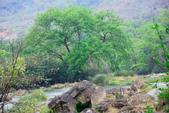 多彩貴州8日遊--黃果樹瀑布:1357158913.jpg