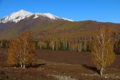 北疆金秋(3)喀納斯湖、禾木村:IMG_4196.JPG