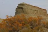 北疆金秋(4)魔鬼城、獨山子、烏魯木齊:IMG_5691.JPG