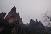 20111019_武陵源(天子山、袁家界):20111019_118_袁家界.JPG