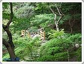 京阪神奈良之旅20081010-20081014:DSCF6518.jpg