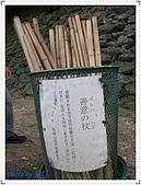 京阪神奈良之旅20081010-20081014:DSCF6530.jpg