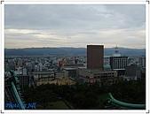 京阪神奈良之旅20081010-20081014:DSCF6551.jpg