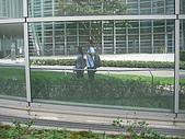 2008 Sep-07 東京蜜月 day 10:IMG_1386.JPG