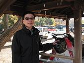 Kyoto 嵐山 (day 2):unair最愛跟牛合影