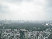 2008 Sep-07 東京蜜月 day 10:房間外的景觀 ~ 再見啦!