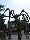 2008 Sep-07 東京蜜月 day 10:其實是我要求要再來一次啦,因為我要拍大蜘蛛