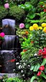 gif:waterfalli_BsweXnkl.gif