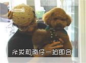 驛棧香草餐廳狗聚:14