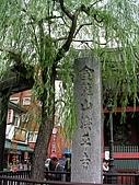 2007日本行--淺草週邊+明星手印:淺草寺柳樹。 喔,時間來到了10/10旅行的最後一天