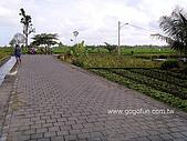 [活動] 峇里烏布單車遊梯田:單車步道