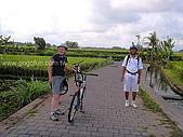 [活動] 峇里烏布單車遊梯田:第二次的休息
