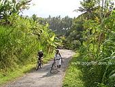 [活動] 峇里烏布單車遊梯田:爬坡道