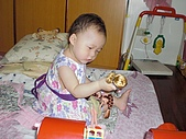 2008年中生活點滴:CIMG0146.jpg