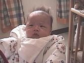 2001-2002 Baby:怒髮衝冠