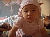 2008年中生活點滴:GEDC0731.jpg