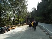 2014阿里山櫻花:2014蘭展 012.jpg