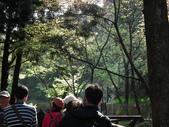 2014阿里山櫻花:2014蘭展 011.jpg