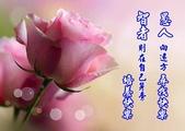 網路相片分享:1378895_543772832357488_1558589956_n.jpg