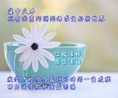 網路相片分享:599357_10200999525172901_315442314_n.jpg
