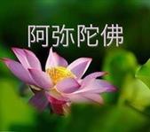 網路相片分享:1236696_572096579520537_580250441_n.jpg