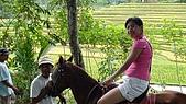 20091125峇里島day2:DSC01095.jpg