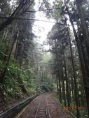 嘉義-奮起湖-多林車站:DSC02859.JPG