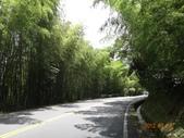 嘉義-奮起湖-多林車站:DSC02851.JPG