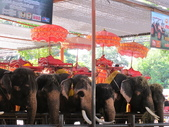 2011-8-21曼谷六日:2011.8曼谷六日 150.JPG