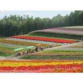 2012-08-30~09-04北海道.:相簿封面