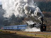 蒸汽老火車.所有火車:09135.jpg