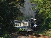 蒸汽老火車.所有火車:09162.jpg