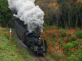 蒸汽老火車.所有火車:09163.jpg