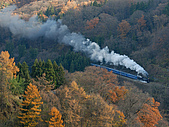 蒸汽老火車.所有火車:09166.jpg