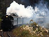 蒸汽老火車.所有火車:17019.jpg